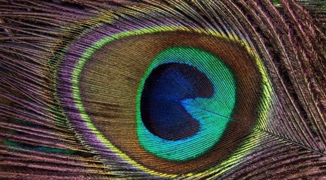 ヒプナゴジア: エジソンのように夢を見る方法