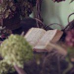 バシャールがおすすめする本 8冊