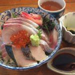 シリウス意識アドロニスが日本人の変わってる点を指摘する