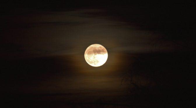 2017年1月12日 蟹座の満月 エネルギーリーディング