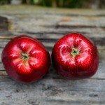 スピリチュアル・ダイエット 食事をエネルギーワークに変える6つのヒント