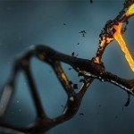 12本のDNAアクティベーション コンプリート・ガイド