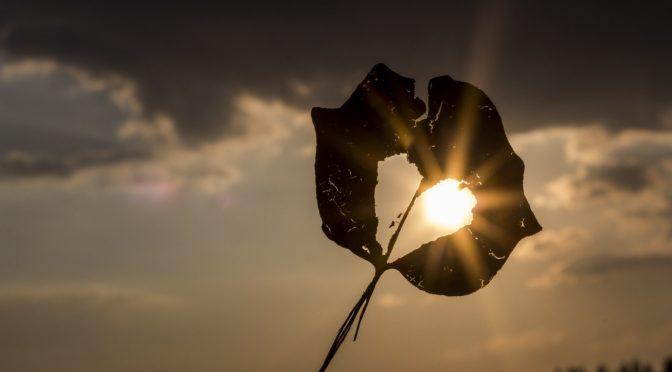 2017年アセンション予報 7月のエネルギー