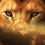 8月8日 ライオンズゲート 惑星の新年の意味